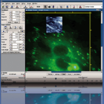 Direct Overlay Software Module Bio Science
