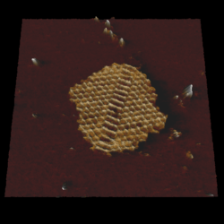High Resolution Imaging Of Dna Nanoarchitectures Using Afm